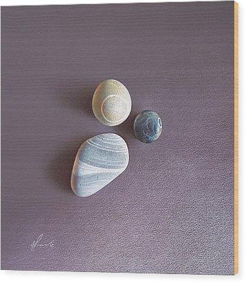 Lines And Circles Wood Print by Elena Kolotusha