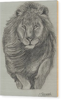 Wood Print featuring the drawing Lion by Christy Saunders Church