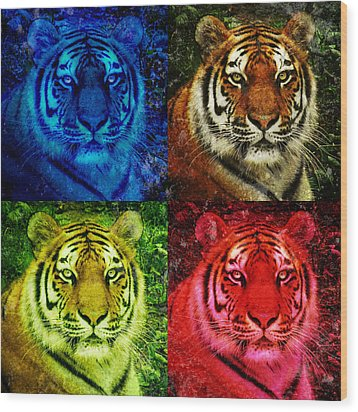 Lion Face Colored Squares Wood Print by Angela Waye