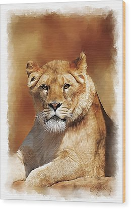 Lioness Portrait Wood Print by Michael Greenaway