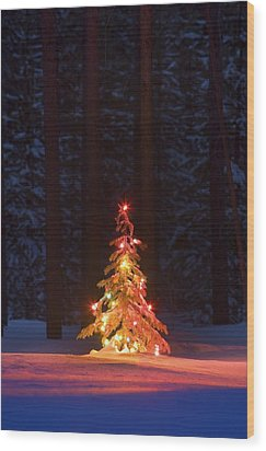 Lit Christmas Tree In A Forest Wood Print by Carson Ganci