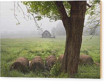 Little Barn Wood Print by Debra and Dave Vanderlaan