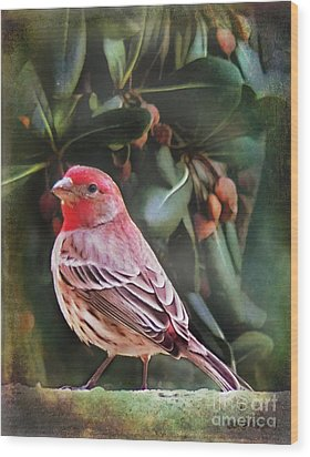 Wood Print featuring the digital art Little Bird Iv by Rhonda Strickland