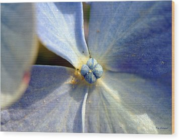 Wood Print featuring the photograph Little Blue Flower by Kay Lovingood