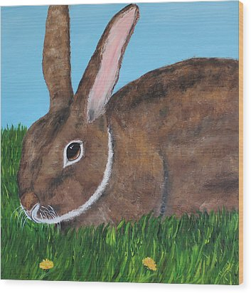 Little Brown Bunny Wood Print by Christie Minalga