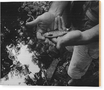 Little Fish Wood Print by Sarah Buechler