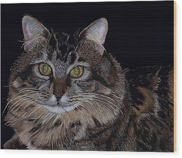 Little Girl - Maine Coon Cat Painting Wood Print by Patricia Barmatz