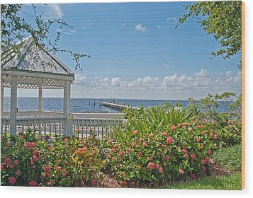 Little Harbor Tampa Bay Wood Print by John Black