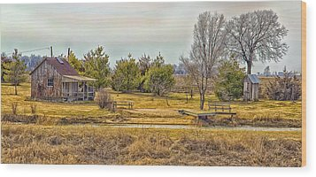 Little House On A Prairie Wood Print by Bill Tiepelman