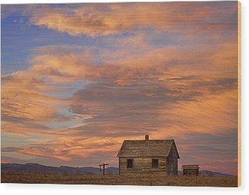 Little House On The Colorado Prairie Wood Print by James BO  Insogna