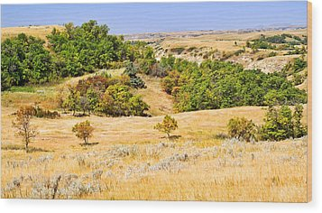 Little Missouri River Grasslands Wood Print by Bill Morgenstern
