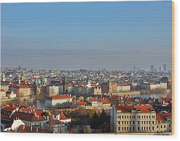 Little Mother Prague Wood Print by Christine Till