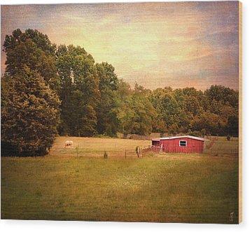 Little Red Barn Wood Print by Jai Johnson