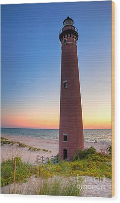 Little Sable Point Light Station Wood Print by Larry Carr
