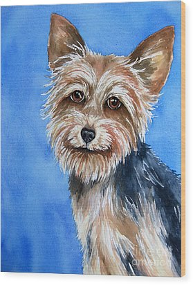 Little Yorkie Wood Print by Cherilynn Wood