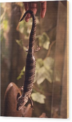 Lizard Tail Wood Print
