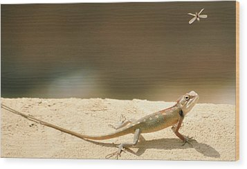 Lizards Wood Print by Shahzeb Nasir