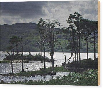 Loch Assynt Wood Print by Steve Watson