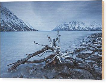 Log Along The Shores Of Kathleen Lake Wood Print by Robert Postma