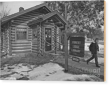 Log Cabin Library 11 Wood Print by Jim Wright
