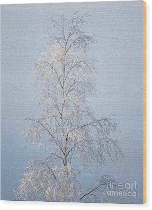 Lone And Slender Wood Print by Ari Salmela