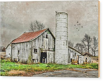 Wood Print featuring the photograph Lone Barn by Mary Timman