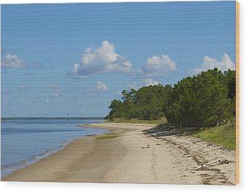 Lone Beach Wood Print by Ralph Jones