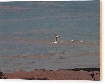 Lone Gull  Wood Print by Gilbert Artiaga