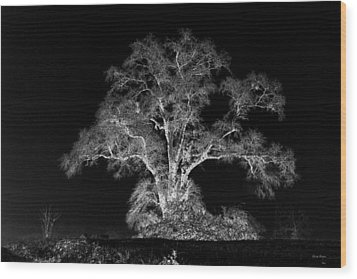 Wood Print featuring the photograph Lone Tree 002 by George Bostian