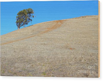 Lone Tree At Coyote Hills California . 7d10906 Wood Print by Wingsdomain Art and Photography
