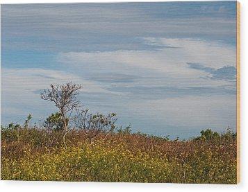 Wood Print featuring the photograph Lone Tree On The Rhode Island Coast by Nancy De Flon