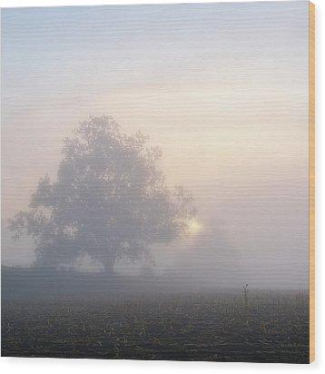Lone Tree Wood Print by Paul Simon Wheeler Photography