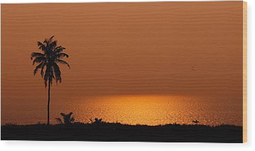 Lone Tree Silhouette During Sunset Wood Print by Hegde Photos