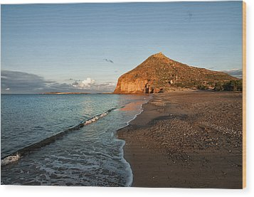 Lonely Beach Wood Print by Manolis Tsantakis