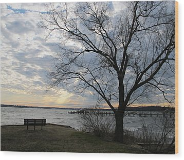 Lonely Bench At Dusk Wood Print by Valia Bradshaw