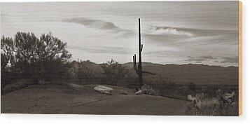 Lonely Cactus Wood Print