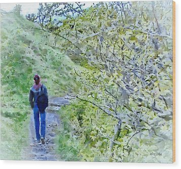 Lonely Path Wood Print by Jeff Kolker