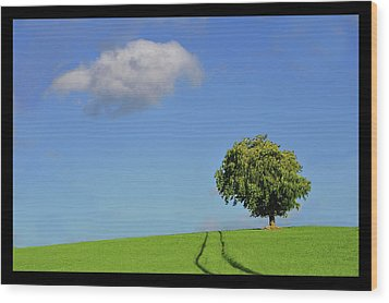 Lonely Tree Against Blue Sky Wood Print by Ernie Watchorn