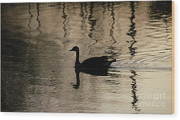 Wood Print featuring the photograph Lonely by Vilas Malankar