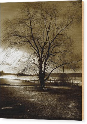 Lonely Willow Wood Print