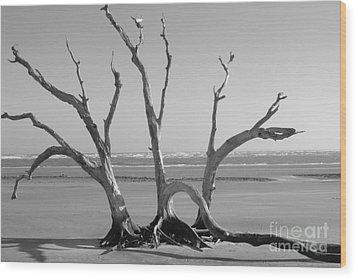 Lonesome Tree Wood Print by Melody Jones