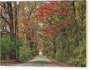 Wood Print featuring the photograph Long Bumpy Dirt Road by Rachel Cohen