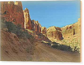Long Canyon 1 Wood Print by Marty Koch