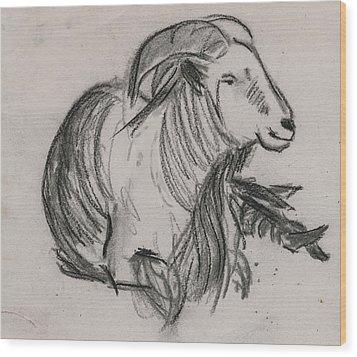 Long Horn Mountain Goat Wood Print by Ethel Vrana