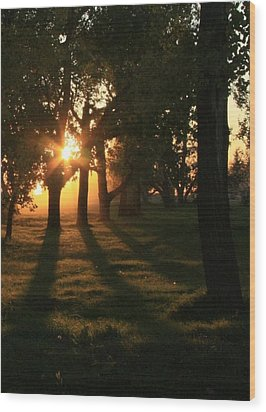 Long Shadows Wood Print by Ellery Russell