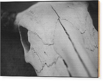 Longhorn Skull Wood Print by Julie VanDore