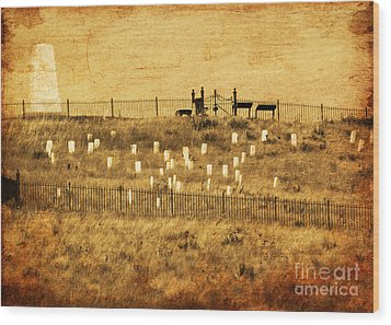 Looking At History Wood Print by Terrie Taylor