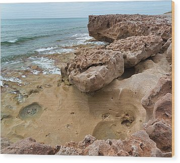 Looking Down From Above Blowing Rocks Preserve Wood Print by Michelle Wiarda