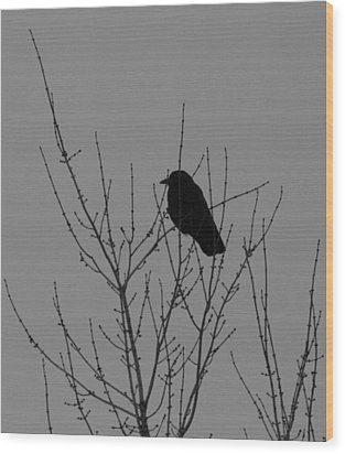 Looking Forward Wood Print by Artist Orange