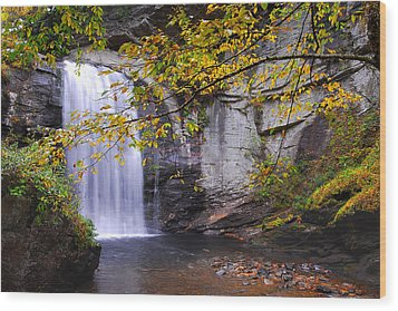 Looking Glass Falls Wood Print by Alan Lenk